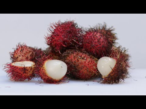 How to eat Rambutan fruit | What does Rambutan Taste like