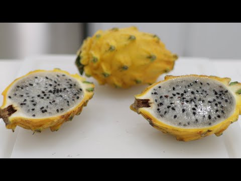 How to Eat Yellow Dragon Fruit (Pitahaya, Pitaya) | Taste Test