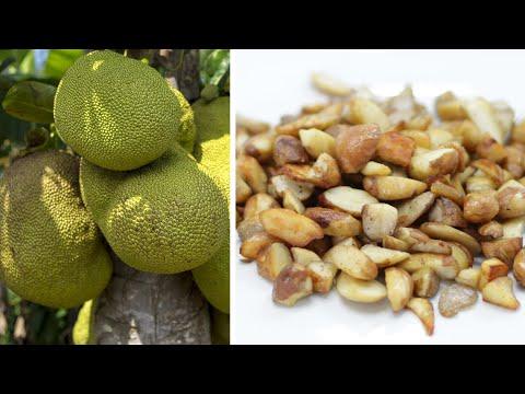 How to Cook Jackfruit seeds | Easy Jackfruit Seeds Recipe