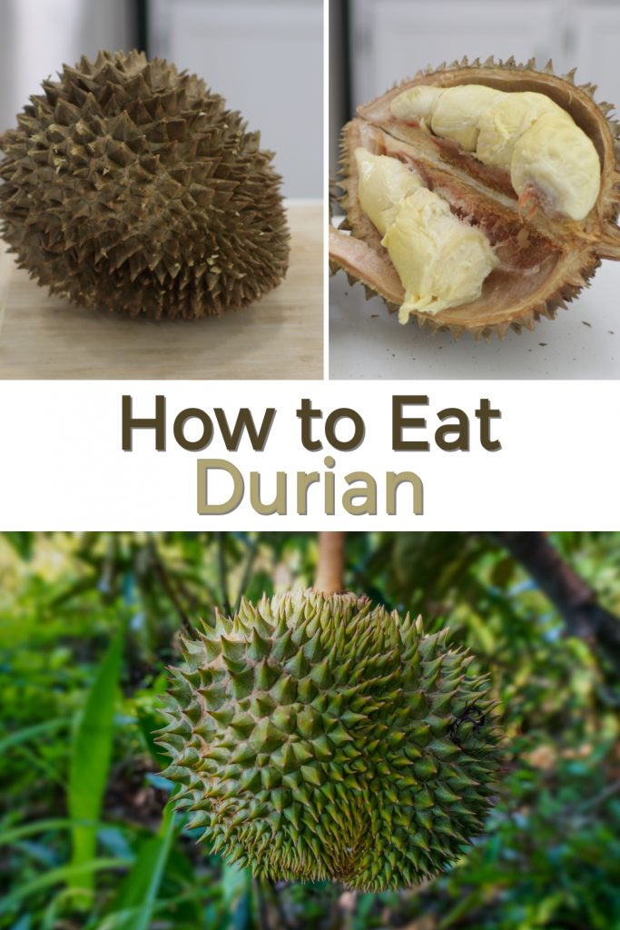 How to eat durian pin for Pinterest