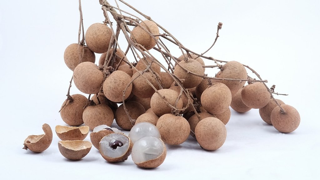 Several longan on a branch on a white counter.
