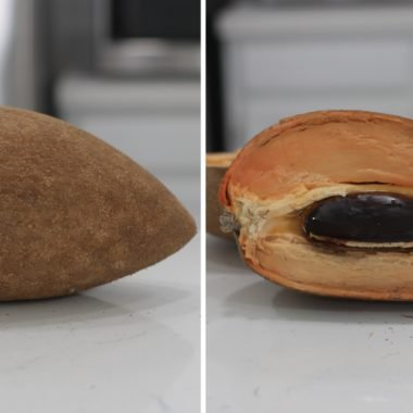 mamey sapote cut open on a counter