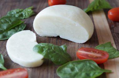Fresh homemade mozzarella cheese from milk powder on a cutting board.
